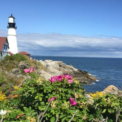 Trend Talk #2: What could Maine's tourism season look like?